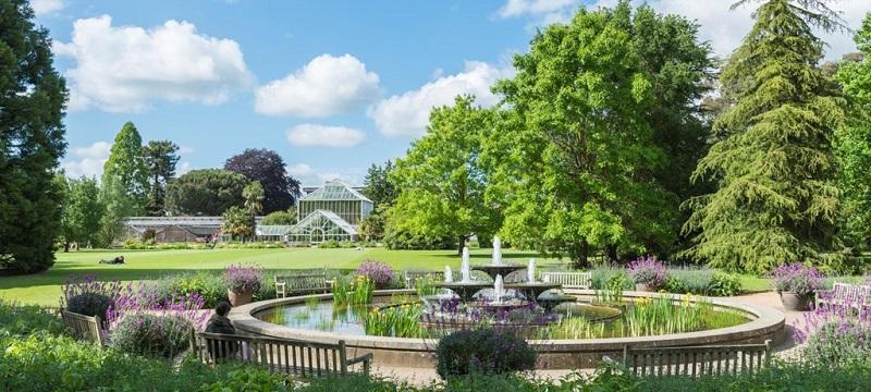 Photo of Cambridge University Botanic Garden.