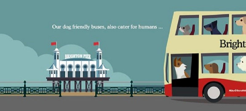 Brighton and Hove buses poster.