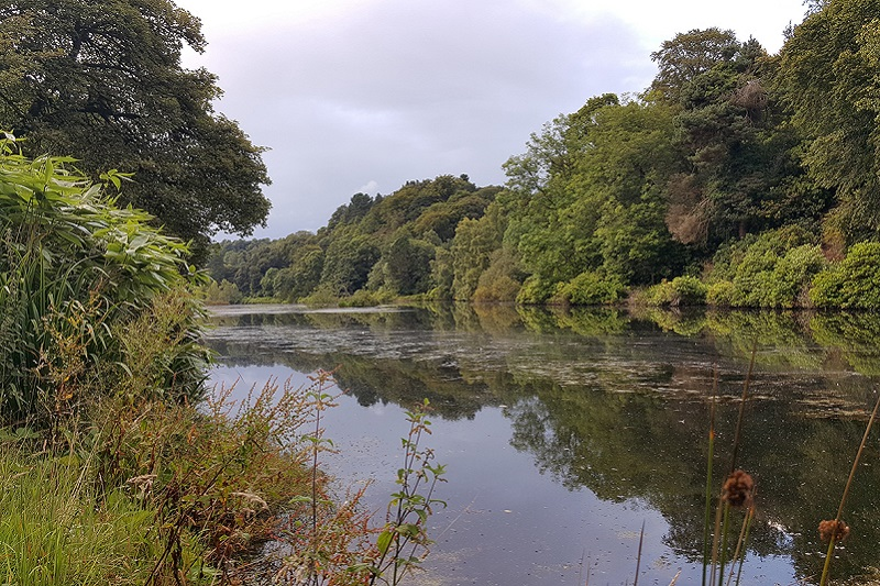 Photo of the private loch at Glampotel.