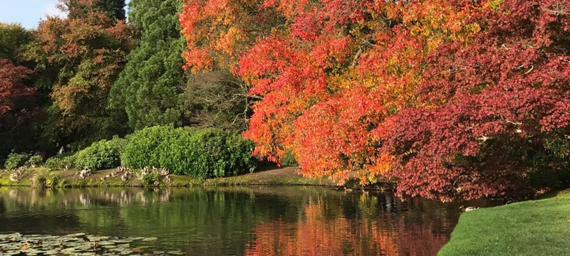 Photo of Sheffield Park and Garden.