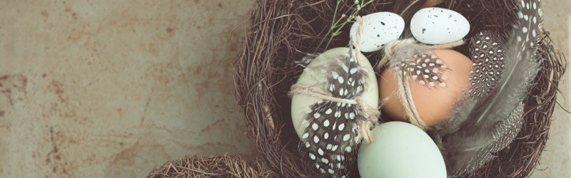 Photo of a basket of eggs.
