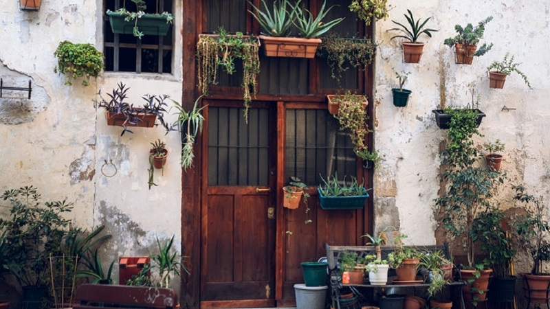 Photo of a doorway surrounded by plants in Barcelona.