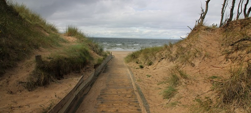 Photo of boardwalk and beach at Roseisle Forest.