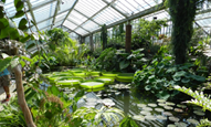 Guided Discovery Bus tours at Kew Gardens
