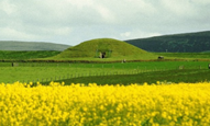 Guided tour of Maeshowe Chambered Cairn
