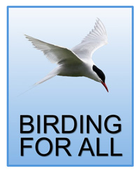 The Logo of Birding for All