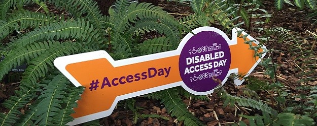 Photo of a Disabled Access Day arrow.