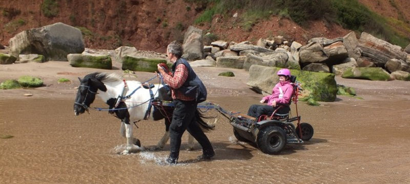 Photo of a wheelchair user pony trekking on the beach.