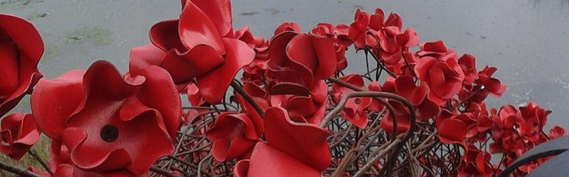 Photo of poppy sculpture.