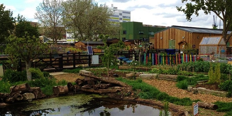 Photo of Stepney City Farm.